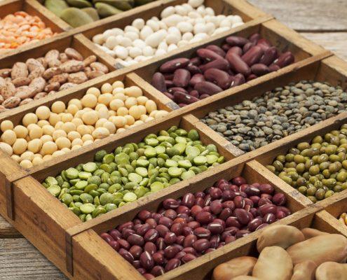 bigstock seeds legumes beans44731063