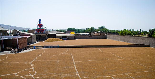 کارخانه لپه سازی آذرشهر