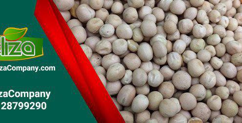 خرید نخود فرنگی خشک