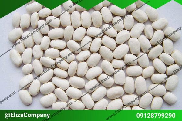 قیمت لوبیا سفید در ایران