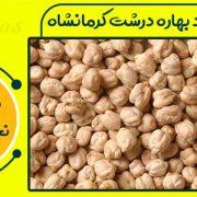 فروش نخود بهاره درشت کرمانشاه