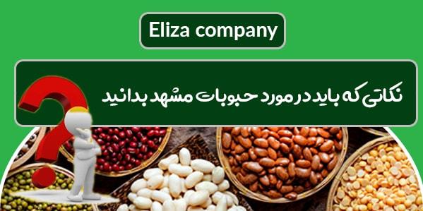 فروش و توزیع انواع حبوبات فله