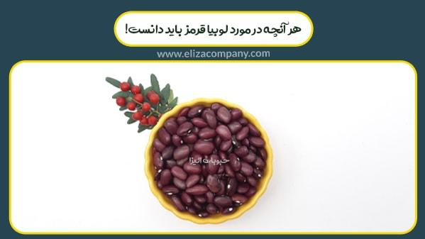 قیمت روز لوبیا قرمز ایرانی