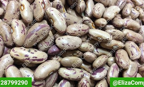 بازار فروش لوبیا چیتی