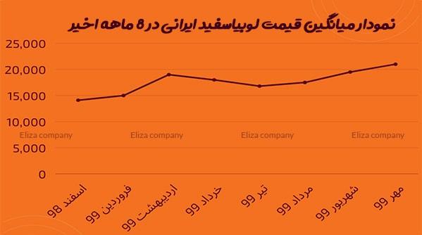 قیمت روز لوبیا سفید صادراتی