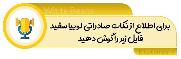 صادرات لوبیا سفید ایرانی