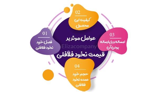 قیمت نخود فلافلی کرمانشاه