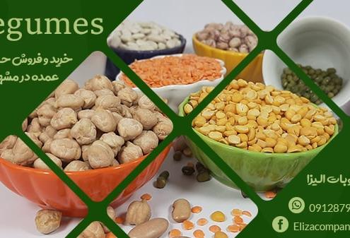 فروش عمده حبوبات در مشهد