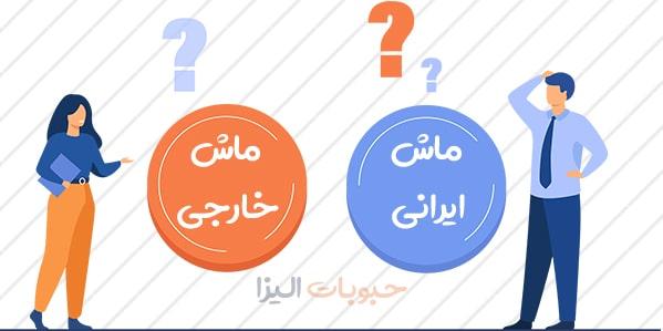 فروش عمده ماش ایرانی و خارجی